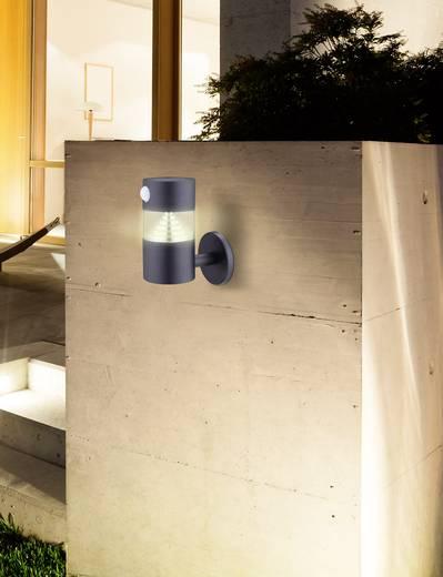 solar wandstrahler mit bewegungsmelder warm wei polarlite wldc06pir dunkel grau. Black Bedroom Furniture Sets. Home Design Ideas