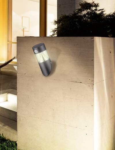 solar wandstrahler mit bewegungsmelder warm wei polarlite wldc03pir dunkel grau. Black Bedroom Furniture Sets. Home Design Ideas