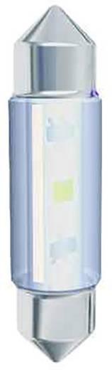 LED-Soffitte S8 Kalt-Weiß 24 V/AC, 24 V/DC 17.20 lm Signal Construct MSOC083164HE
