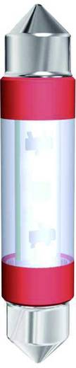 LED-Soffitte S8 Warm-Weiß 12 V/AC, 12 V/DC 17.4 lm Signal Construct MSOC083952HE