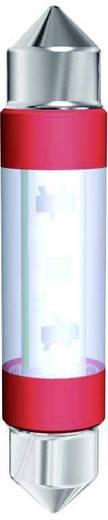 Signal Construct LED-Soffitte S8 Blau 12 V/AC, 12 V/DC 3.6 lm MSOC083942HE