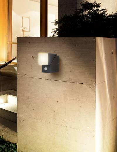 LED-Wandleuchte mit Bewegungsmelder Warm-Weiß Polarlite Spot Pir8 Dunkel-Grau