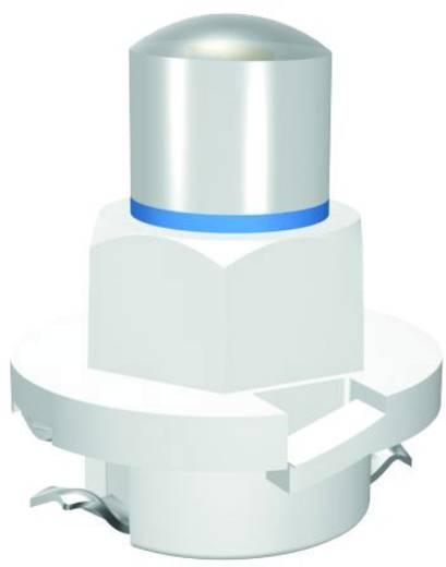 Signal Construct LED-Lampe B8.0-12 (EBSR/BAX) ähnlich Gelb 24 V/AC, 24 V/DC 400 mcd MWTB8414