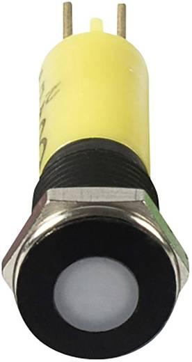 Signal Construct LED-Signalleuchte Gelb 12 V/AC, 12 V/DC SFEU081225