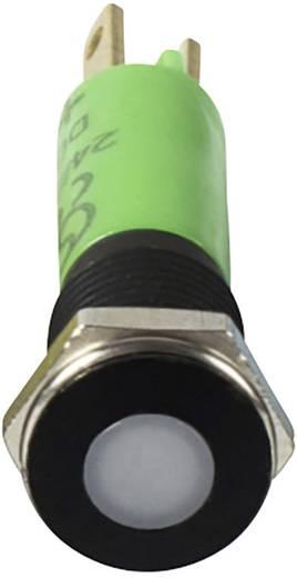 LED-Signalleuchte Grün 24 V/AC, 24 V/DC Signal Construct SFEU087245