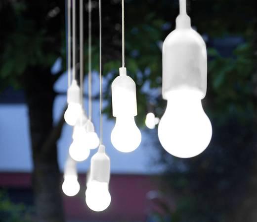 Lux LED-Dekoleuchte 2er Set LED 1 W Neutral-Weiß HandyLux White ...
