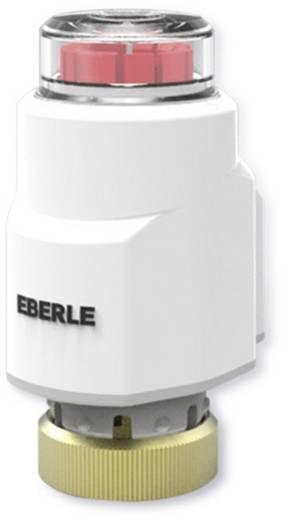 Stellantrieb thermisch Eberle TS Ultra (24 V)