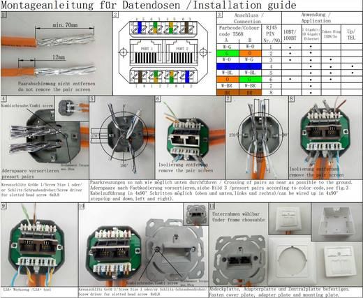 Netzwerkdose Wand Einsatz mit Zentralplatte und Rahmen CAT 6a 2 Port Renkforce Reinweiß (9010)