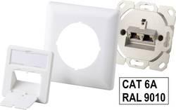 Síťová zásuvka montáž na zeď Renkforce RF-3301838, CAT 6A, 2 porty, čistě bílá
