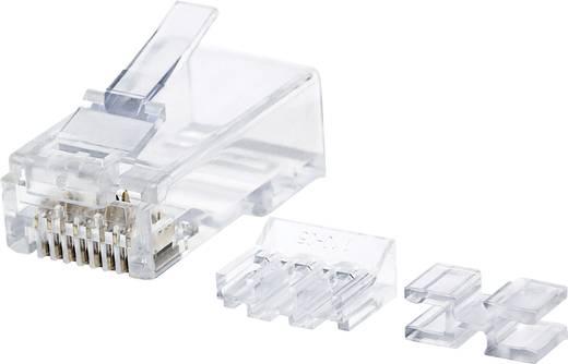 Intellinet 80er-Pack Cat6A RJ45-Modularstecker UTP 2-Punkt ...