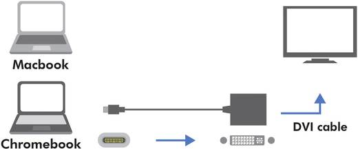 USB / DVI Adapter [1x USB 3.1 Stecker C - 1x DVI-Buchse 24+5pol.] Weiß LogiLink