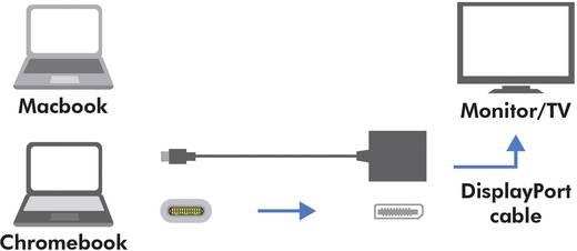 LogiLink USB / DisplayPort Adapter [1x USB 3.1 Stecker C - 1x DisplayPort Buchse] Weiß