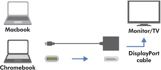 USB / DisplayPort Adapter [1x USB 3.1 Stecker C - 1x DisplayPort Buchse] Weiß LogiLink