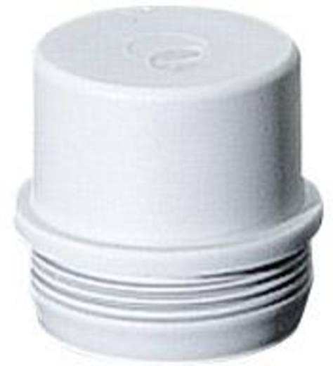 Einsteckstutzen Hensel 1659651 (Ø) 32.5 mm