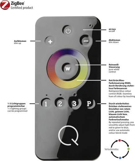 Paul Neuhaus Q® LED-Tischlampe Q®-Fisheye LED fest eingebaut 6 W RGBW