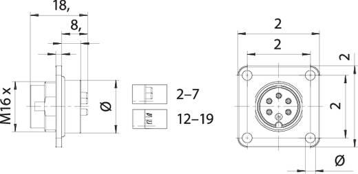 Binder 09 0127 300 07 Miniatur-Rundsteckverbinder Flanschstecker Gesamtpolzahl: 7 1 St.