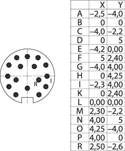 M16 Flanschstecker 16 polig 09 0507 300 16 Binder 1 St.