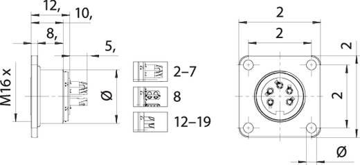M16 Flanschdose 3 polig 09 0108 300 03 Binder 1 St.