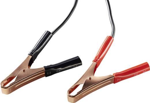 AEG Werk WM15/100A 158009 Kfz-Ladegerät 12 V, 6 V 8 A 15 A