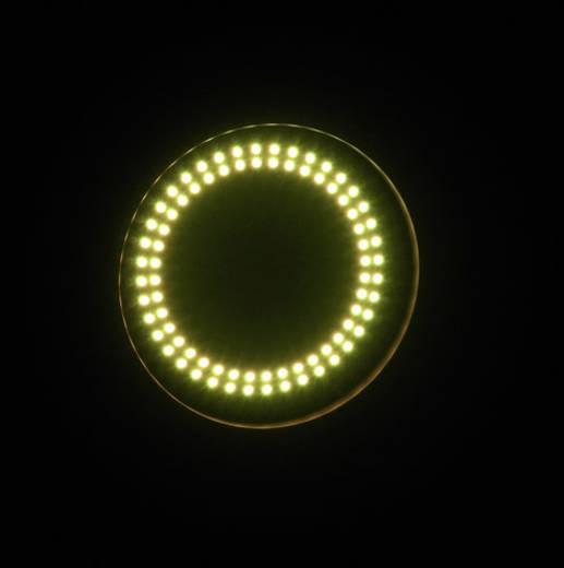 LED-PAR-Scheinwerfer Eurolite PAR-64 HCL Hypno Floor Anzahl LEDs: 127 Schwarz