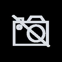 Franklin Audio-digitaler Vorlesestift Anybook Anywhere
