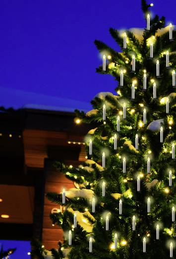 Polarlite Funk-Weihnachtsbaum-Beleuchtung Außen batteriebetrieben 20 St. LED Warm-Weiß