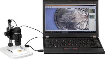 digitale Vergrößerung eines USB-Mikroskops