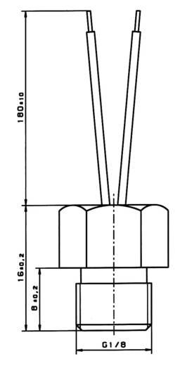 PT100 Platin-Temperatursensor Heraeus W-GJK (SCH) -40 bis +250 °C