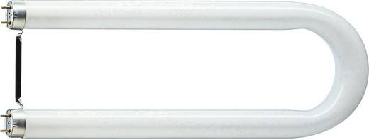 Philips Lighting Leuchtstoffrohre Eek A A E 2g13 36 W Neutral