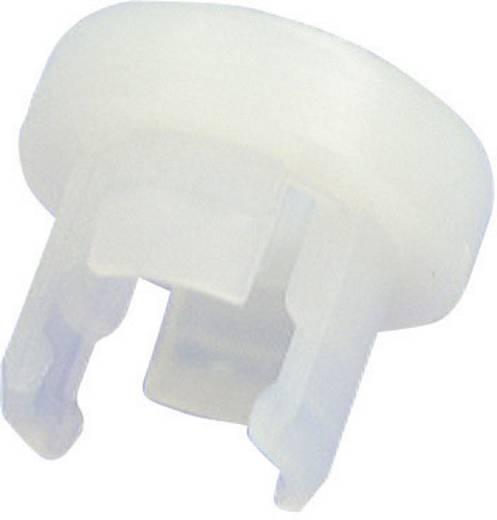 LED-Fassung Polyamid 6.6 Passend für LED 5 mm SnapIn Richco LEDHPM-1