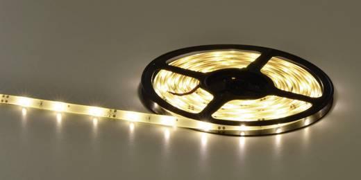 LED-Streifen mit offenem Kabelende 12 V 502 cm Warm-Weiß Barthelme Y51515226 182003