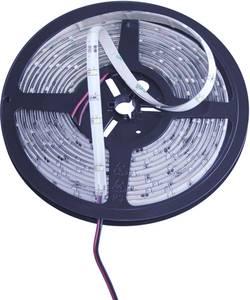 Ruban LED avec câble à extrémités ouvertes Barthelme Y51516225 184208 12 V 500 cm blanc 1 pc(s)