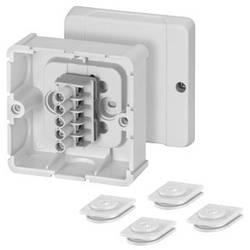 Rozbočovací krabice Hensel 6000038 šedobílá (RAL 7035) IP54