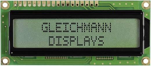 LC-Display 3-farbig (B x H x T) 80 x 36 x 13.2 mm Gleichmann GE-C1602B-CFH-JT/R