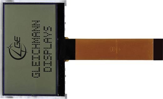 LC-Display Schwarz Gelb-Grün (B x H x T) 72.1 x 29.6 x 9.4 mm Gleichmann GE-O1602F-YYH-AT/R