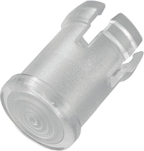 Leuchtkappe Transparent Passend für LED 5 mm EDK-1C-PCW