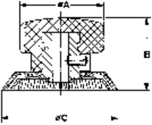 Drehknopf mit Zeiger Schwarz (Ø x H) 42 mm x 27 mm Mentor 322.611 1 St.