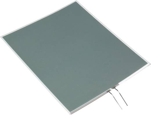 Leuchtfolie Grün (L x B x H) 138 x 34 x 0.5 mm Conrad Components
