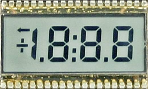 LC-Display Schwarz Weiß (B x H) 50.8 mm x 30.5 mm SE 6904