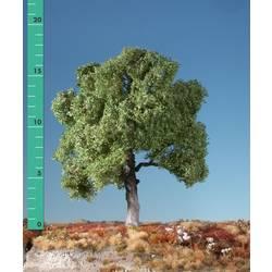 Image of Mininatur 220-12 Baum Buche 1 St.
