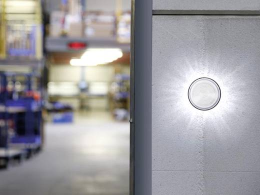 Signalleuchte LED Velleman HAA40WN Weiß Blitzlicht 12 V/DC