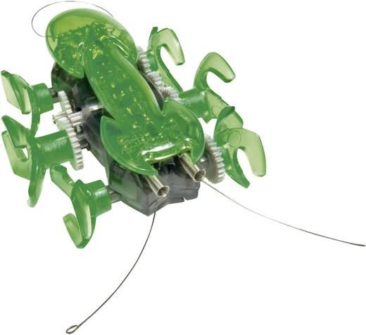 HexBug Roboter Ant