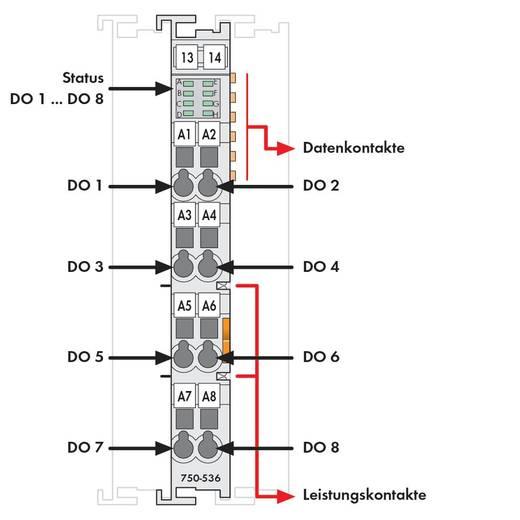 WAGO SPS-Digitalausgangsmodul 750-536 1 St.