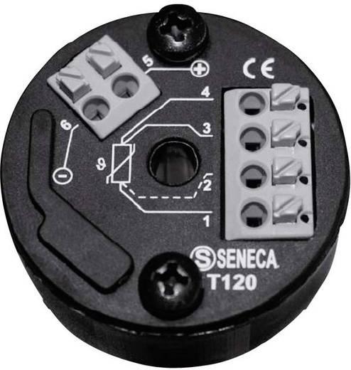 Wachendorff WT120000 Kopftransmitter für Pt100/Ni100 WT120RTD