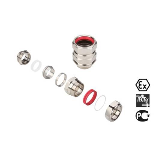 Kabelverschraubung M50 Messing Messing Weidmüller KDSW M50 BS O NI 1 G50 1 St.
