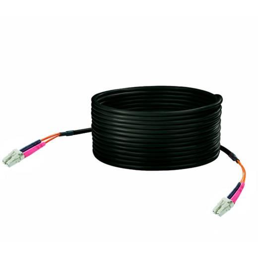 Weidmüller Glasfaser LWL Anschlusskabel [1x ST-Stecker - 1x ST-Stecker] 50/125 µ Multimode OM2 100 m