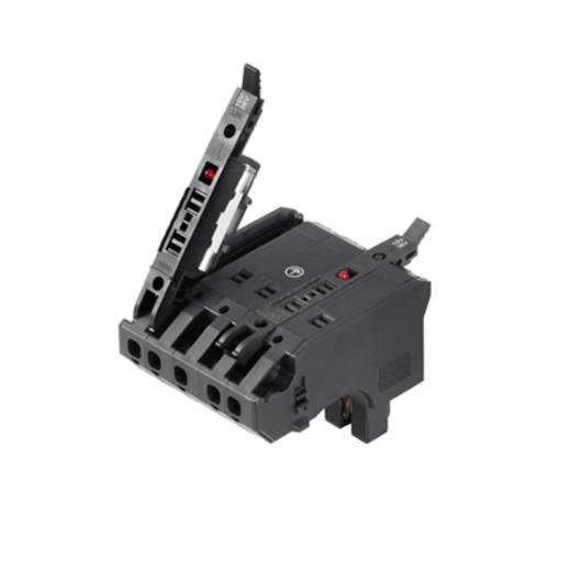 Weidmüller 1252210000 Sicherungs-Steckverbinder flexibel: 0.5-4 mm² starr: 0.5-4 mm² Polzahl: 5 1 St. Schwarz