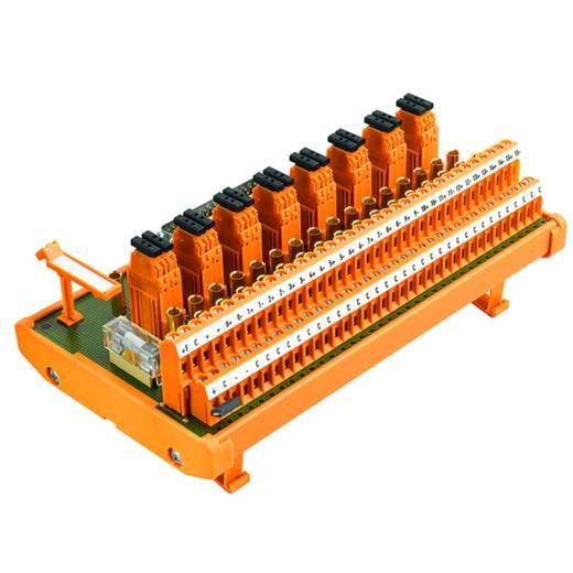 Übergabeelement 1 St. Weidmüller RS 16AIO I-M-DP SD S 50, 25 V/DC, V/AC (max)