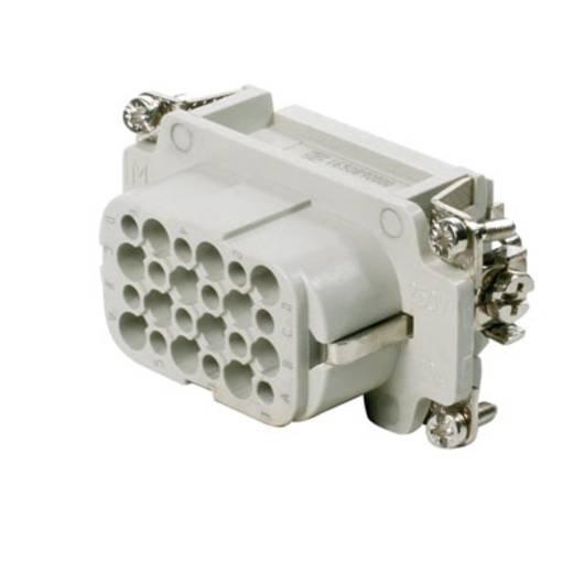 Buchseneinsatz RockStar® HDC HD 1650890000 Weidmüller 24 Crimpen 1 St.