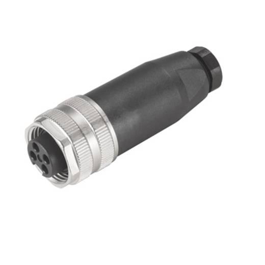 "Weidmüller 1812480000 Sensor-/Aktor-Steckverbinder, unkonfektioniert 7/8"" Buchse, gerade Polzahl: 4 1 St."